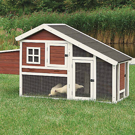 Trixie Pet Products Chicken Coop with a View, Brown/White