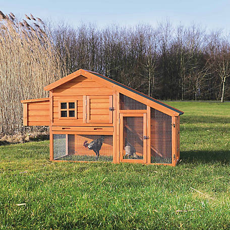 Trixie Pet Products Chicken Coop with a View, Glazed Pine