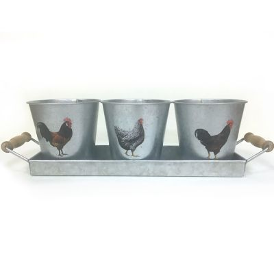 Buy Pail Planter w/ Rooster Online