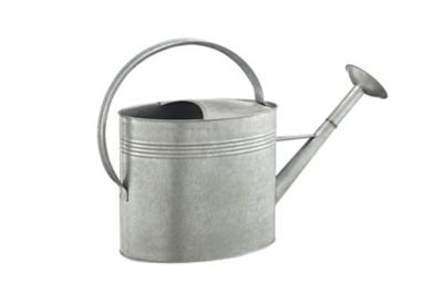 Groundwork Metal Watering Can 2 Gal