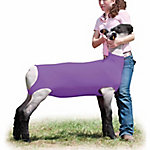 Weaver Leather Livestock Spandex Lamb Tube