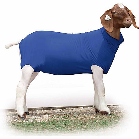 Weaver Leather Livestock Spandex Goat Tube