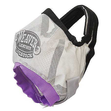 Weaver Leather Cattle Fly Mask, Purple/Gray