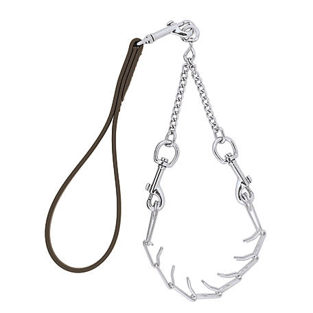 Weaver Leather Livestock Pronged Chain Goat Collar and Lead Set