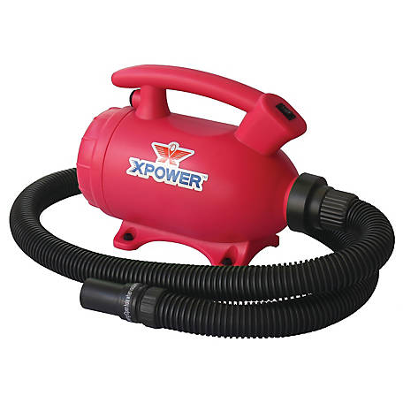 XPOWER B-55 Home Pet Grooming Force Dryer & Vacuum