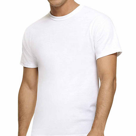 56d87a52a11 Hanes Men s Big Tall Crew Neck T-Shirt