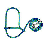Weaver Leather Livestock Poly Rope Sheep Halter with Snap, Lime/Hurricane Blue/Royal Blue