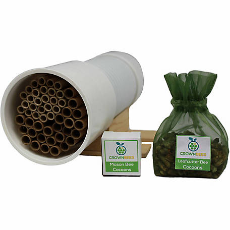 Crown Bees BeeBasic Kit with Choice of 10 Spring Blue Orchard Mason Bees or 50 Summer Leafcutter Bees