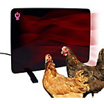 Cozy Chicken Coop Flat Panel Heater, 200W