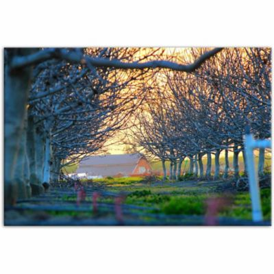 Designs Direct Barn Sunset Hour 48 In X 32 In Canvas Wall Art At Tractor Supply Co