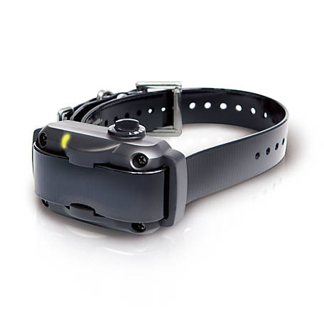 Dogtra No-Bark Collar YS600