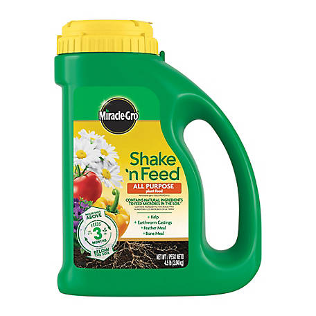Miracle-Gro Shake 'N Feed All Purpose Plant Food 4.5 lb, 3001910