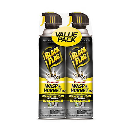 Black Flag Foaming Wasp and Hornet Killer, Twin Pack