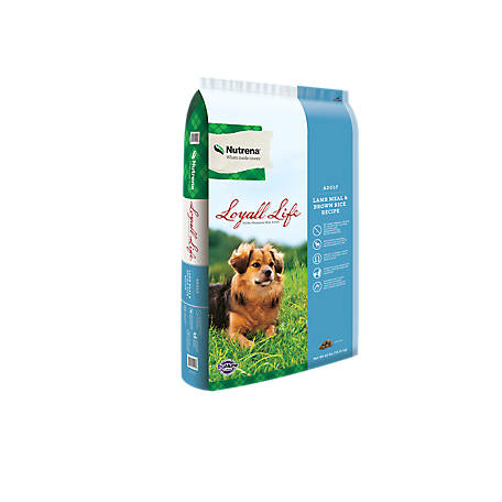 Nutrena Loyall Life Adult Lamb & Rice Dog Food, 40 lb. Bag, 136111-40