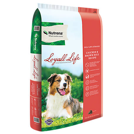 Nutrena Loyall Life All Life Stages Chicken & Rice Dog Food, 40 lb. Bag, 136117-40
