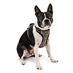 Kurgo Impact Dog Seatbelt Harness