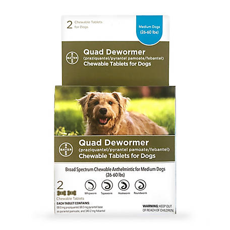 Bayer Quad Dewormer, 68 mg Medium Dogs