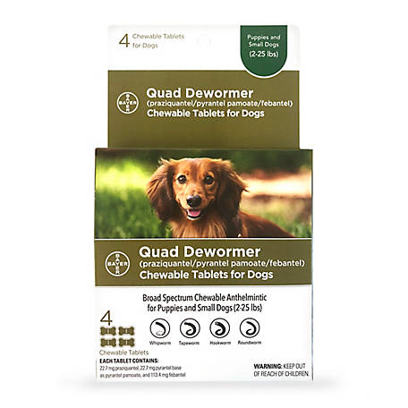 Bayer Quad Dewormer, 22.7 mg Small Dogs