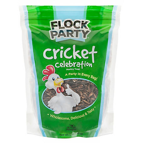 Flock Party Cricket, 5 oz., 1000937