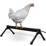 K&H Pet Products Thermo-Chicken Perch, Gray, 36 in., 40W