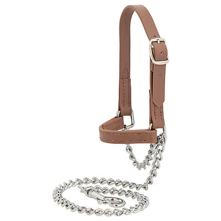 Weaver Leather Livestock Water Buffalo Leather Goat Halter Large 80100-60-64 Assorted Colors