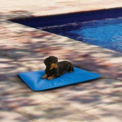 Shop Select Pet Cooling Supplies at Tractor Supply Co.
