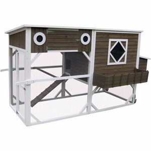 Innovation pet extreme garden storage coop 8 10 for Chicken coop for 8 10 chickens