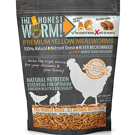 The Honest Worm! Premium Yellow Mealworms