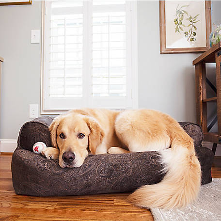 Snoozer Premium Overstuffed Sofa Show Dog Collection Laurel Mocha At Tractor Supply Co