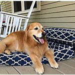 Snoozer Outlast Heating & Cooling Dog Bed, Garden Gate