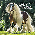 Willow Creek Press 2018 Gypsy Vanner Horse Wall Calendar