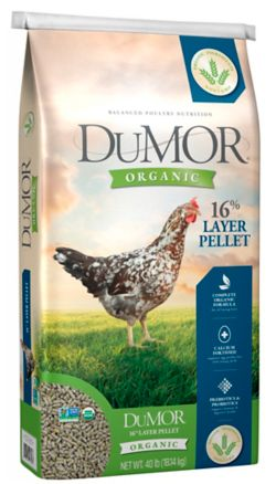 Shop 40 lb. DuMOR Organic 16% Layer at Tractor Supply Co.