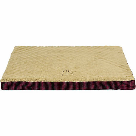Dallas Manufacturing Company 25 in. x 35 in. Premium Orthopedic Pet Bed