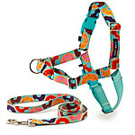 PetSafe Easy Walk Chic No Pull Designer Harness and Leash, Donuts