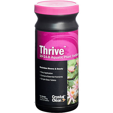 CrystalClear Thrive, Pack of 60