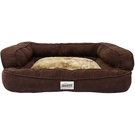 Simmons Beautyrest Colossal Rest Orthopedic Memory Foam Premium Dog Bed