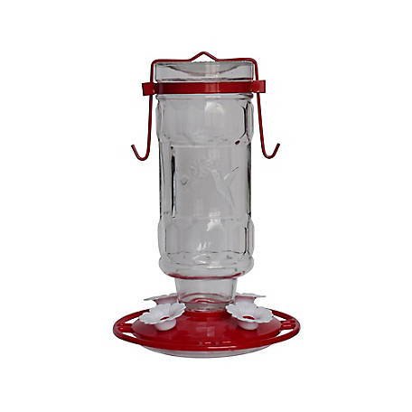 Royal Wing Glass POP Bottle Hummingbird Feeder, HB-0253A-T