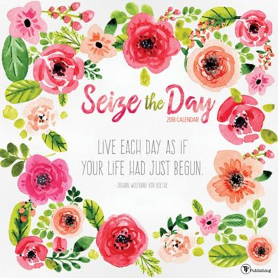 TF Publishing 2018 Seize the Day Wall Calendar