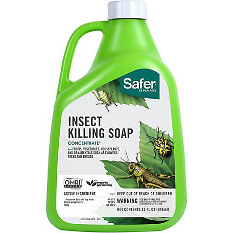 Safer Brand Insect Killing Soap Concentrate, Organic, 32 oz.