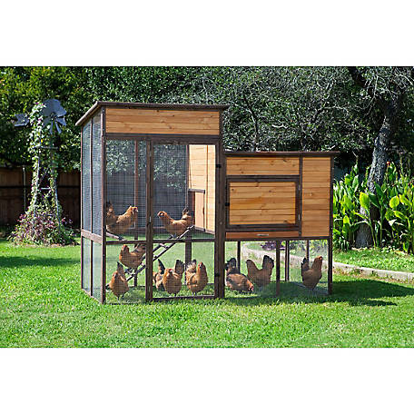 Precision Pet Products Walk In Prairie House Chicken Coop Up To 15