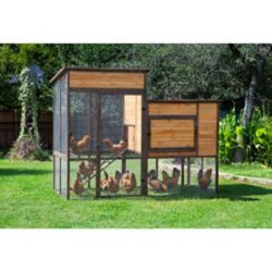Shop Precision Pet Walk-In Prairie House Chicken Coop at Tractor Supply Co.