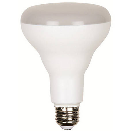 Luminance LED BR-30 Light Bulb