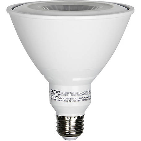 Luminance LED PAR-38 Recessed Can/Spot and Track/Outdoor Light Bulb