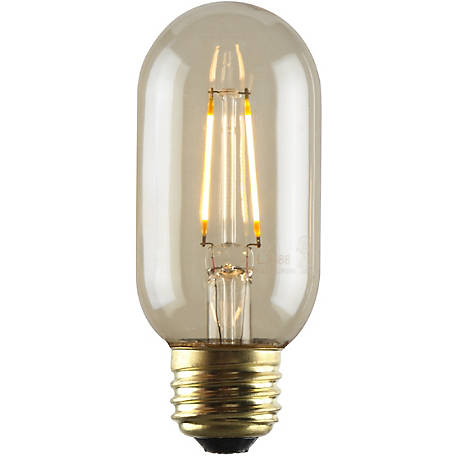 Luminance LED T14 Nostalgia Filament Bulb