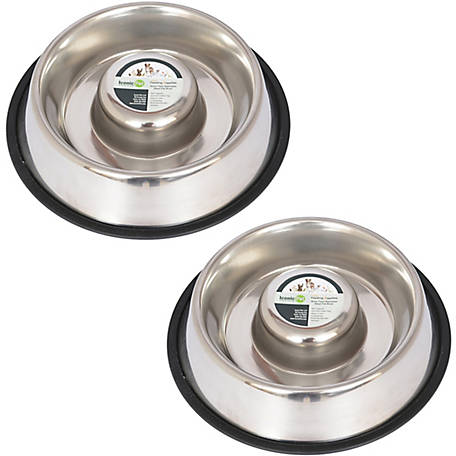 Iconic Pet Slow Feed Stainless Steel Pet Bowl for Dog or Cat, 48 oz., Pack of 2