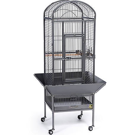 Prevue Pet Products Small Dometop Bird Cage Chalk