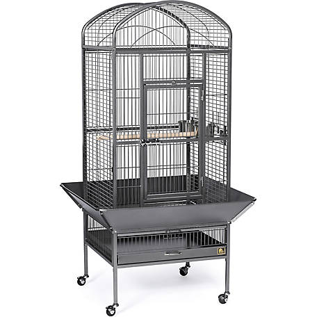 Prevue Pet Products Medium Dometop Bird Cage Chalk