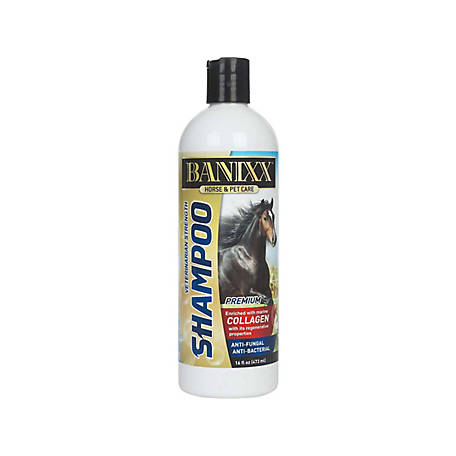Banixx Shampoo Collagen, 63760