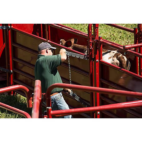 Cattle Sweep System Financing