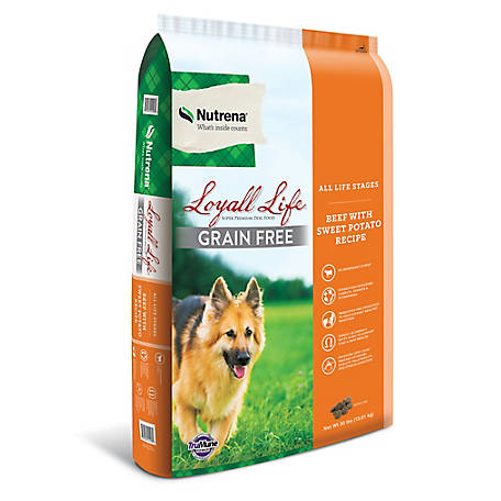 Loyall Life Grain Free All Life Stages Beef & Potato Dog Food, 30 lb. Bag